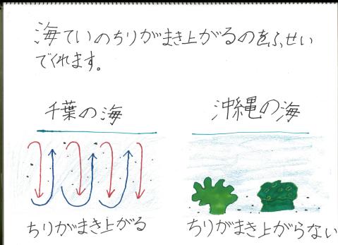 深堀まりあちゃん5