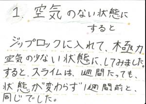 堀江莉奈ちゃん スライムの実験4
