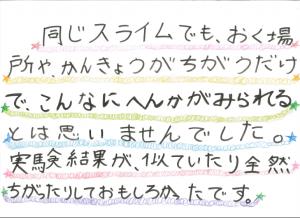 堀江莉奈ちゃん スライムの実験14