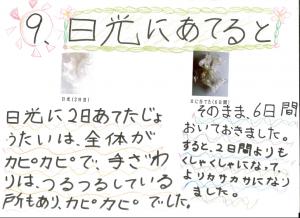 堀江莉奈ちゃん スライムの実験12