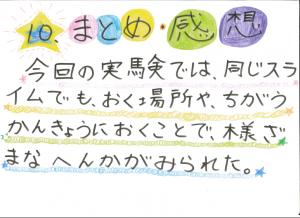 堀江莉奈ちゃん スライムの実験13