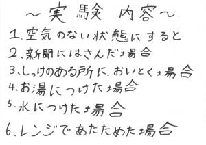 堀江莉奈ちゃん スライムの実験2